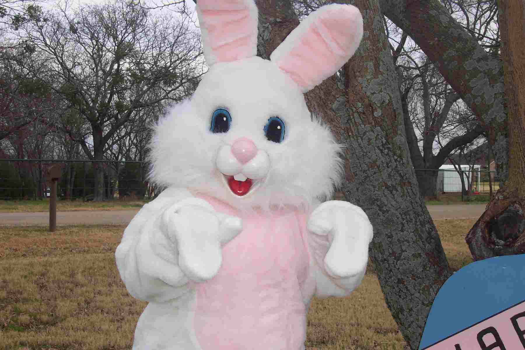The Real Easter Bunny Images